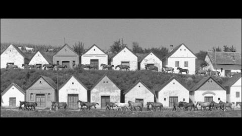 vlcsnap-2014-10-22-18h12m34s15